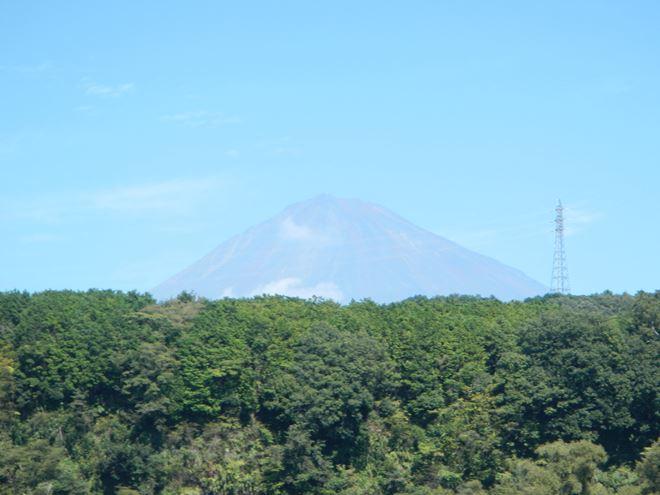 富士山 富士川 ツアー