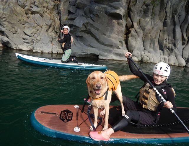 愛犬とSUP 愛犬と川遊び